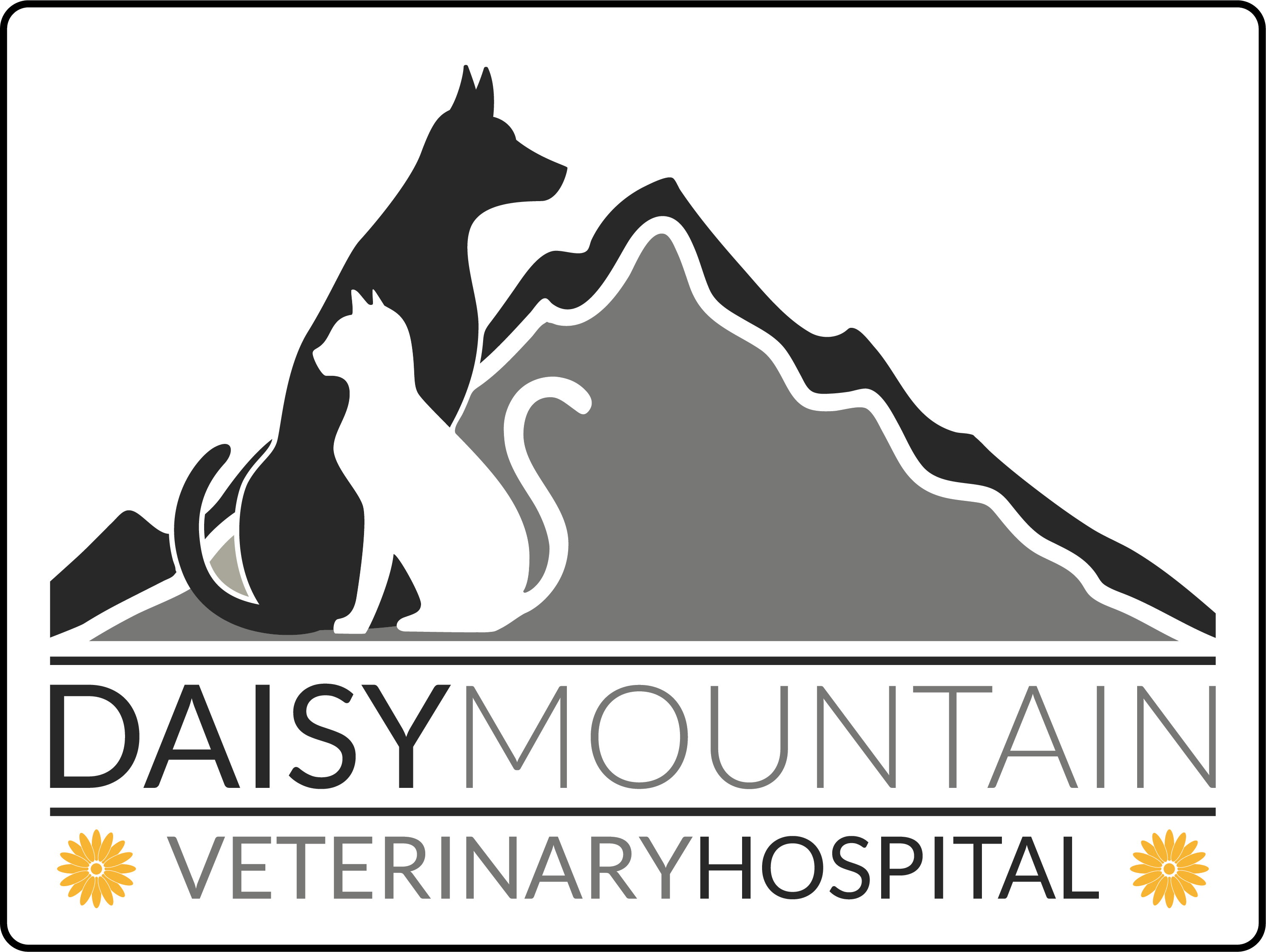 Daisy Mountain Veterinary Hospital